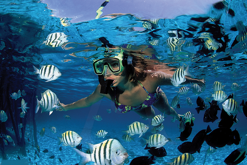 Go On A Snorkel Cruise To Providenciales' Barrier Reef