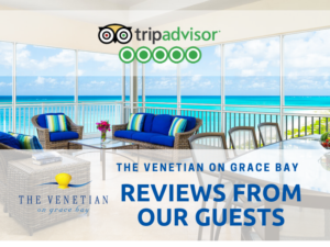tripadvisor banner: guests reviews