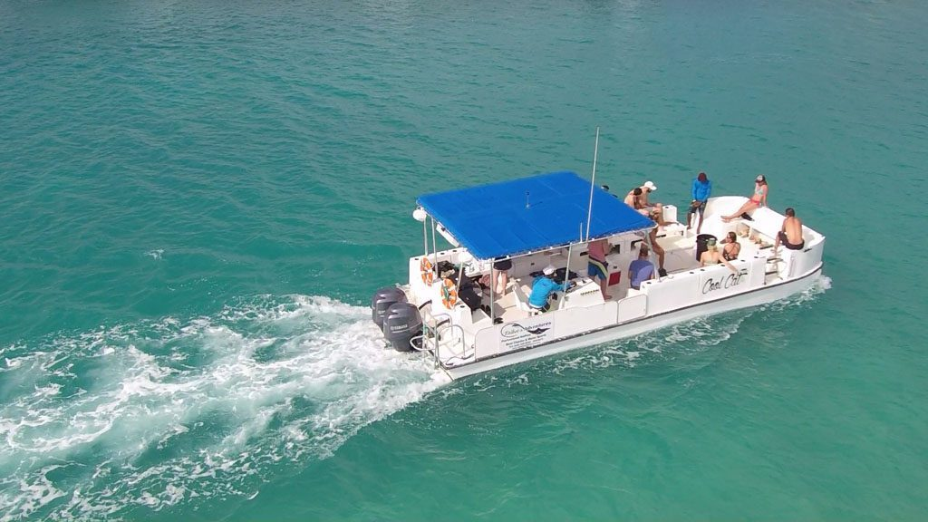 Boat tour: Turks and Caicos Fishing Adventure