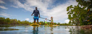 Paddle Tours in Turks and caicos